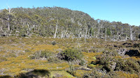 03 Lake Adelaide 2013-01-20.jpg Photo