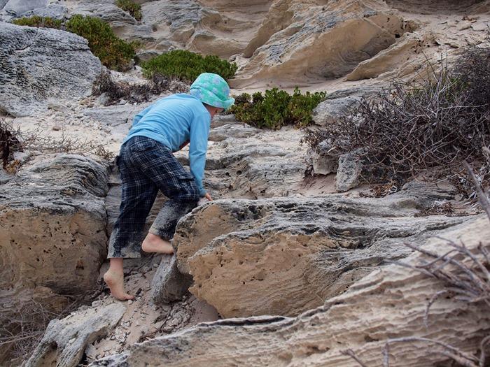 E. climbing rocks