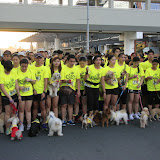 Pet Express Doggie Run 2012 Philippines. Jpg (44).JPG
