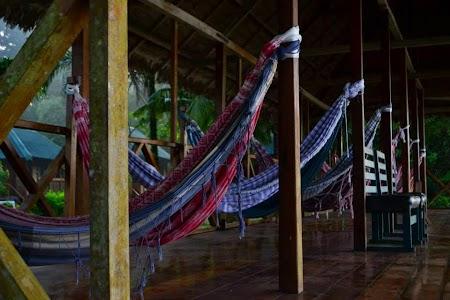 Cazare Jungla amazoniana: Ecoamazonia Lodge Peru