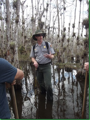 Big Cypress Swamp Hike (25)