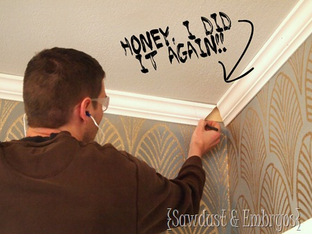 Crown Molding (Sawdust and Embryos)