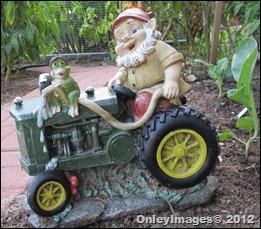 tractor gnome (7)