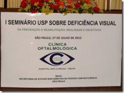 Seminário USP Sobre Deficiência Visual