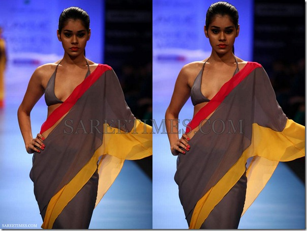 Wendell_Rodricks_Saree