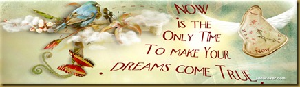 17462-now-is-the-only-time-to-make-your-dreams-come-true