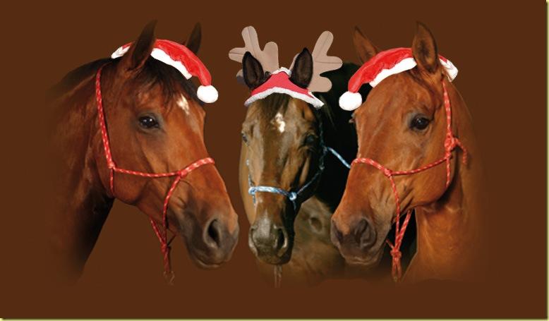 Pferde-weihnachten1