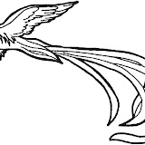Quetzal-1.jpg