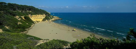 Cala Fonda, platja nudista, espai protegit del Bosc de la Marquesa,  Tarragona, Tarragonès, Tarragona 2001.08
