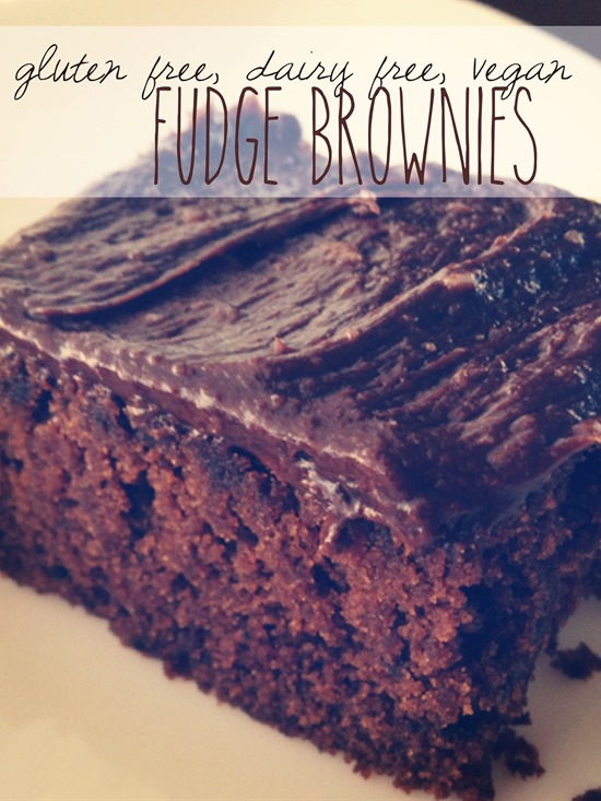 Gluten Free, Dairy Free, Egg Free Brownies