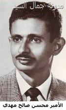 الشاعر محسن بن أحمد مهدي