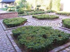 2008.09.26-005 jardin