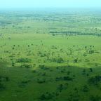 Die grüne Serengeti © Foto: Angelika Krüger | Outback Africa Erlebnisreisen