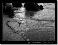 amor todoenamorados (20)