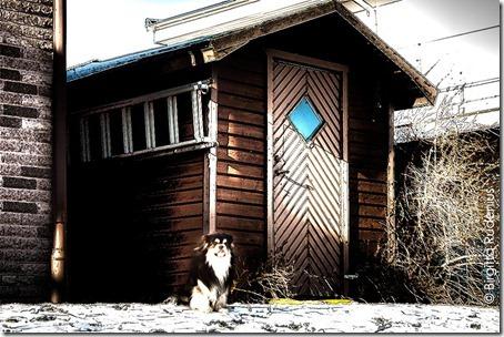 frigga_20120210_milton
