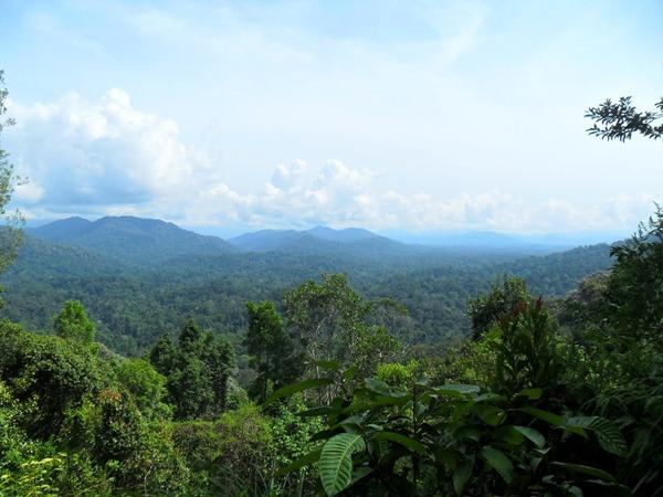 طبيعة ماليزيا الساحرة