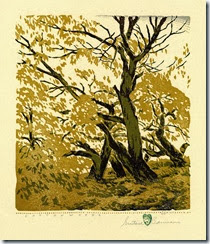 Cottonwoods-by-Gustave-Baumann