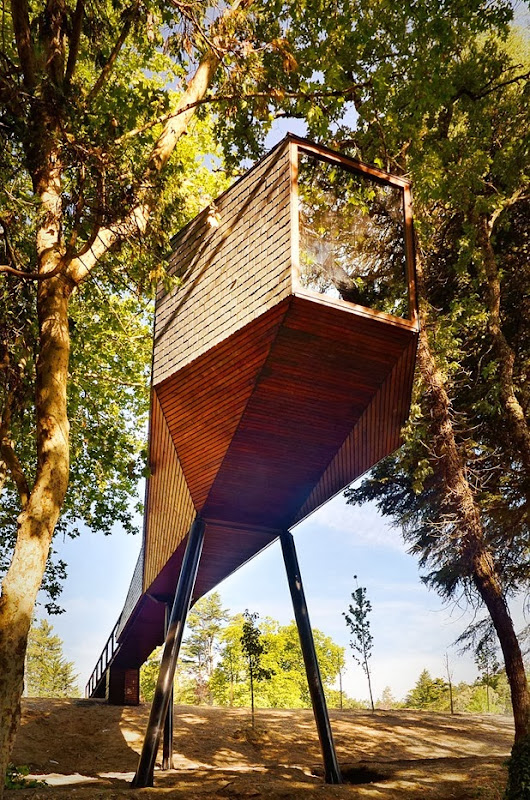 tree snake houses by luís and tiago rebelo de andrade 1