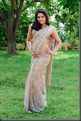 Ragini Dwivedi Hot Saree Stills