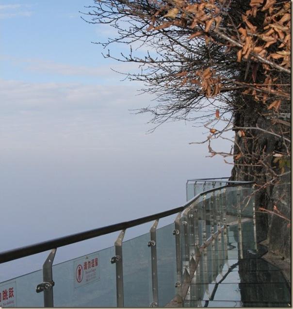 Impressionnante passerelle de verre de la montage de Tianmen (10)