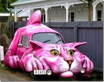 Cat-car - Copy