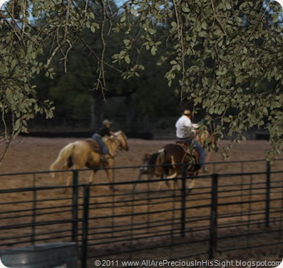 Chrissie's bday roping.Selah's 1st bday party 078