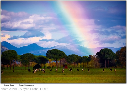 'Rainbow' photo (c) 2010, Moyan Brenn - license: http://creativecommons.org/licenses/by/2.0/