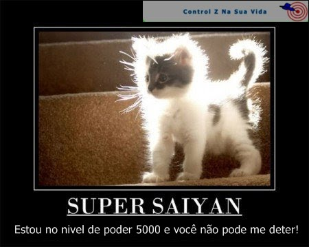 http://lh3.ggpht.com/-FJeup0M6v5o/TaigI4X_wcI/AAAAAAAAAik/r9cdhCAQW28/CatSaiyan.jpg