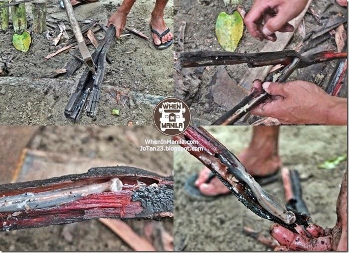sheridan-beach-resort-sabang-puerto-princesa-tour-palawan (38)