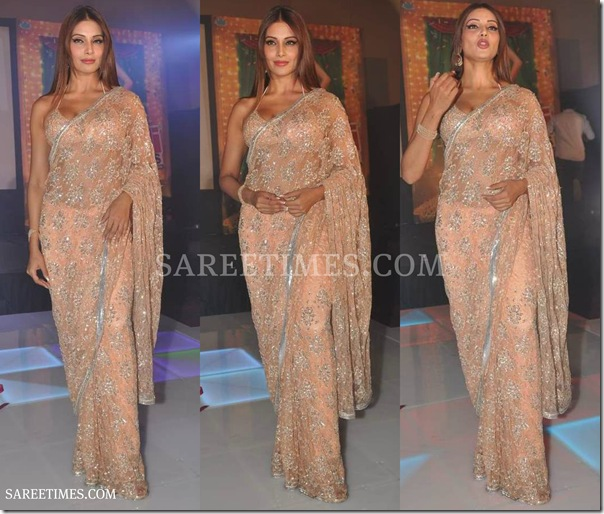Bipasha_Basu_Designer_Embroidery_Shimmer_Sari