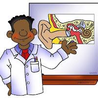 science_human_ear_chart.jpg
