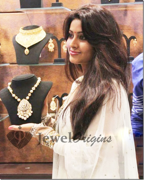 Sneha_Malabar_Gold_and_Diamonds (3)