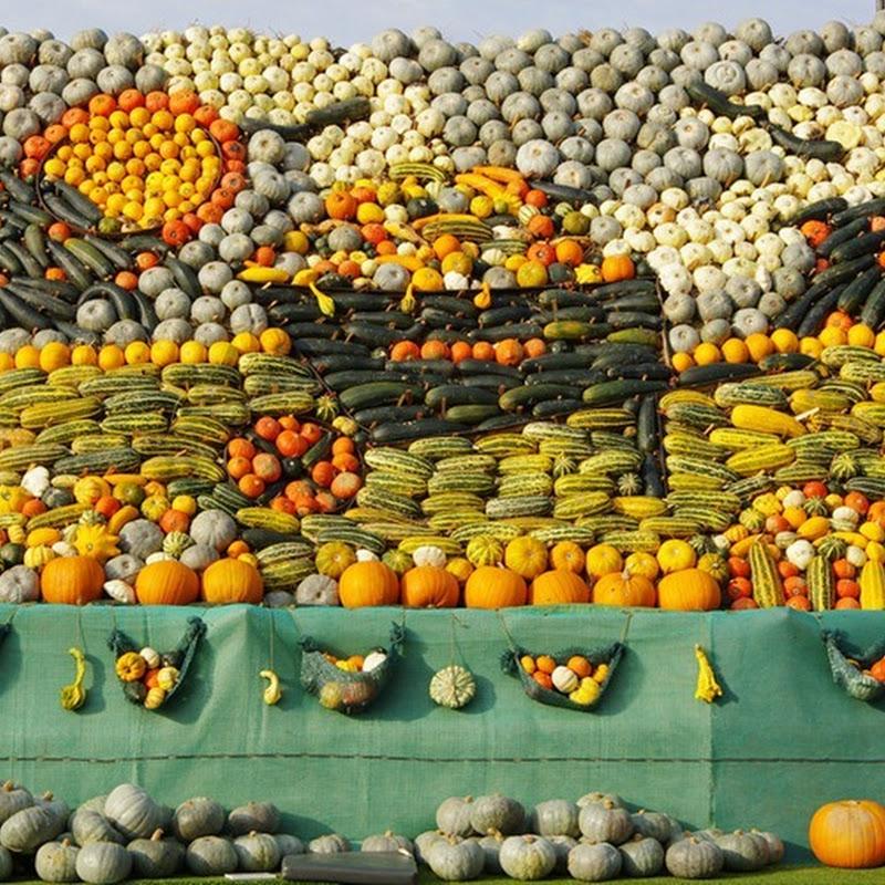 Slindon Pumpkin Festival