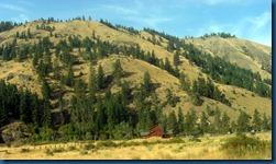 Mt. Rainier (3)