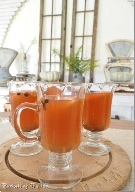 fall dining-apple cider 2