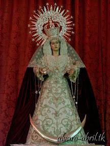 santa-maria-del-triunfo-de-granada-luto-y-mes-del-rosario-2013-alvaro-abril-vela-(9).jpg