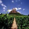 [bourgogne-borgonha-vinho-e-delicias%255B4%255D.jpg]