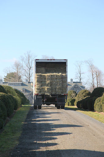 And big trucks can carry big loads!  Just look at all that hay!