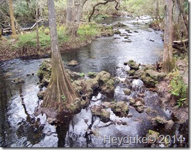 Hillsborough River State Park 016