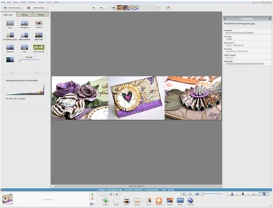 picasa2 collage