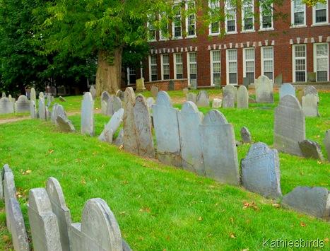 3. Copps graveyard-kab