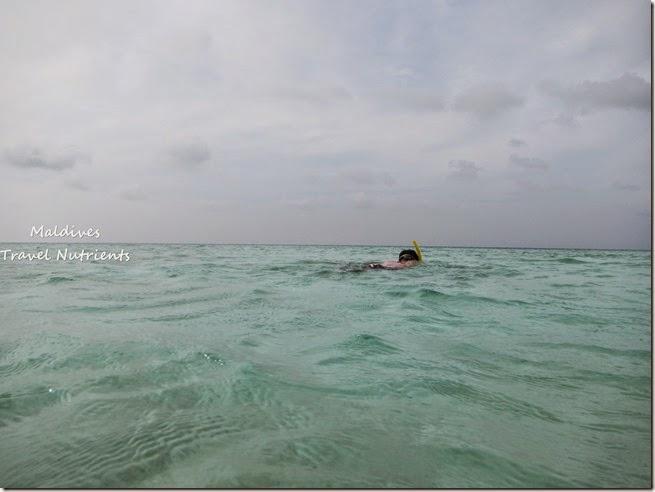 馬爾地夫 野餐島 浮潛 (16)