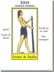 26 taro