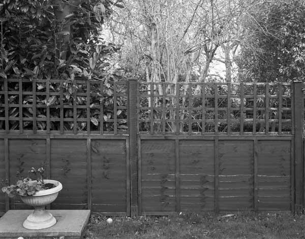 The-Garden014.jpg