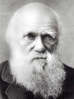 Darwin