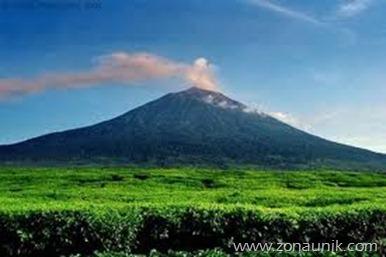 Ohang Pandak-Sumatera