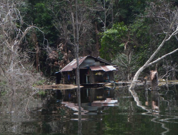 People displaced by Bakun dam - hundreds are living in so-called floating homes. © Bruno Manser Fund