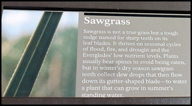 22c1 - Sawgrass Sign