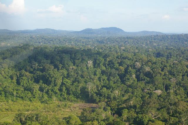 Paysage près de Saül (Guyane). 29 novembre 2011. Photo : J.-M. Gayman