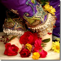 Flowers offered at Krishna's feet